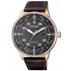 Buy Citizen Men's Watch Aviator Eco-Drive BM7393-16H