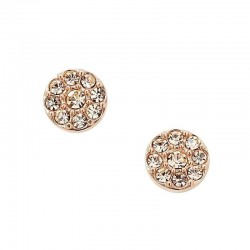 Fossil Ladies Earrings Vintage Glitz JF00830791