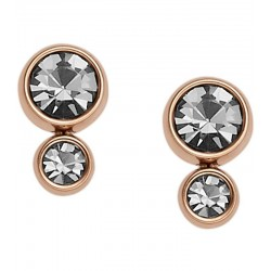 Buy Fossil Ladies Earrings Classics JF02525791