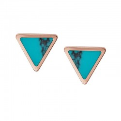Buy Fossil Ladies Earrings Fashion JF02638791