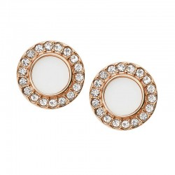 Buy Fossil Ladies Earrings Classics JF02659791
