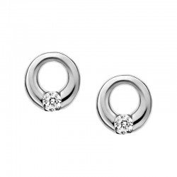 Buy Skagen Ladies Earrings Elin SKJ0311040